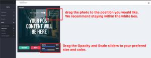 Step 4 Drag Scale Opacity
